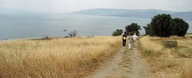 Weg vom Berg der Seligpreisungen zum See Genezaret (Foto: Hubertus Brantzen)
